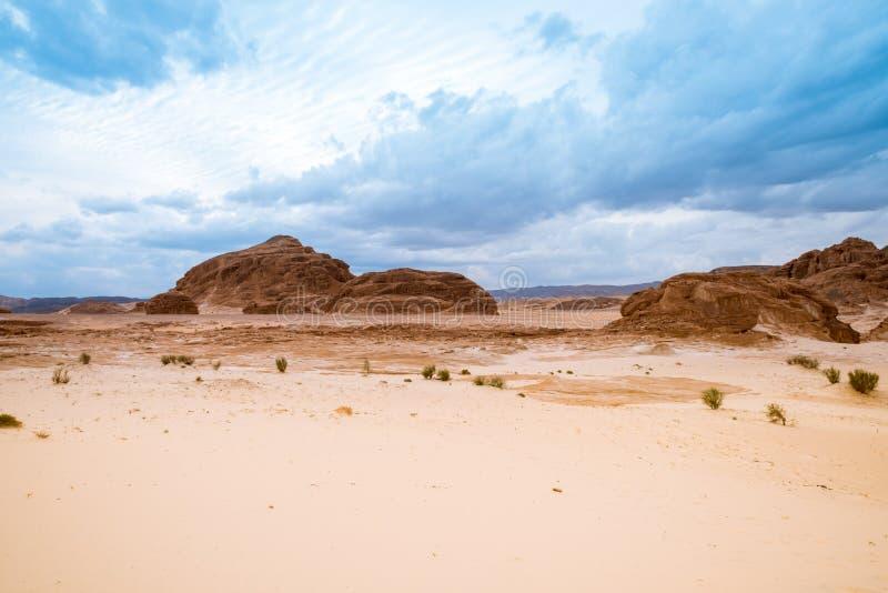 Paysage aride Sinai, Egypte de désert d'or image libre de droits