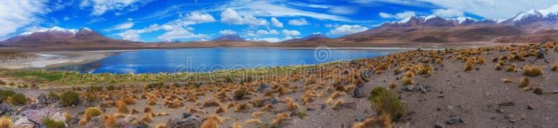 Paysage au lac Hedionda, Bolivie photos libres de droits