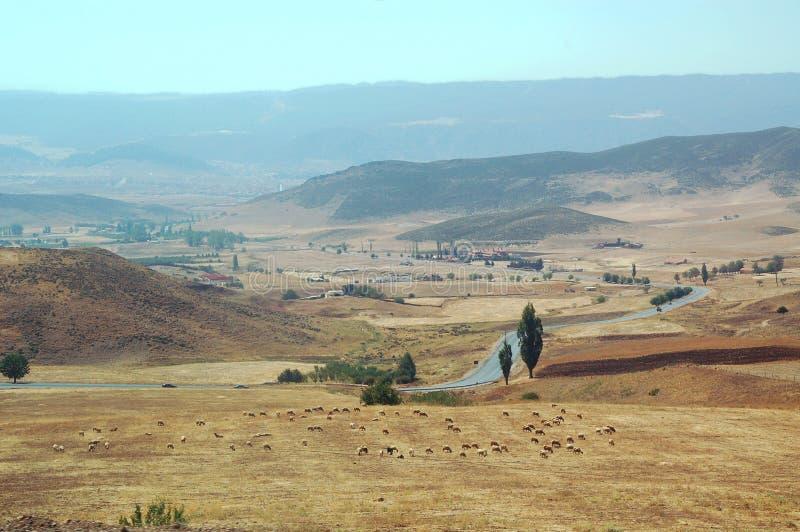 Download Paysage Au Maroc : La Route, Un Troupeau Des Moutons Photo stock - Image du afrique, zone: 45352098