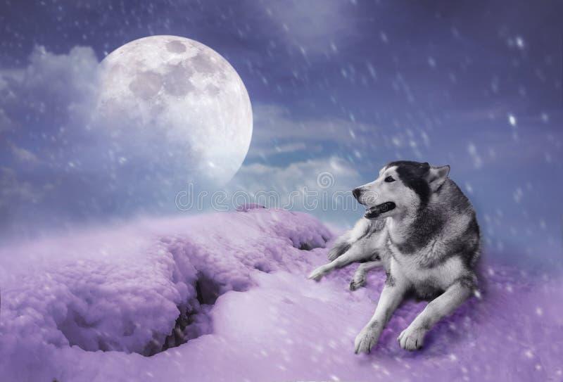 Paysage aux chutes de neige avec la lune superbe Backgroun de nature de sérénité illustration stock