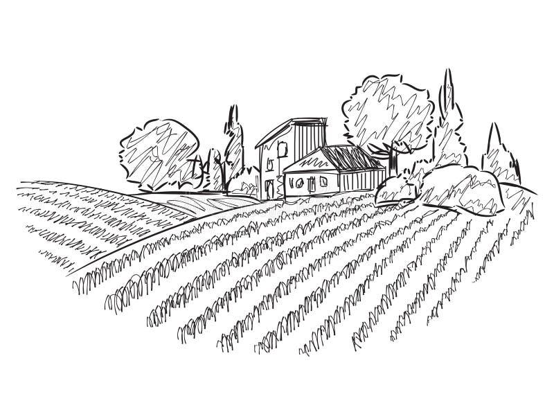 Paysage avec des champs illustration libre de droits