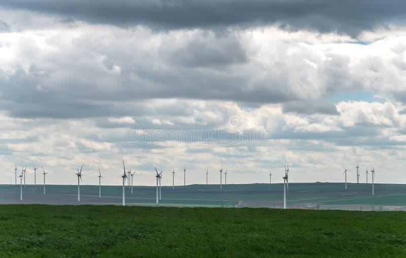 Paysage avec des champs et des espaces verts d'agriculture sur Sunny Day avec le ciel nuageux photographie stock libre de droits