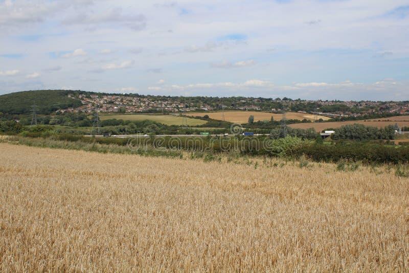 Paysage avec des cultures de céréale de terres cultivables et de région boisée image libre de droits