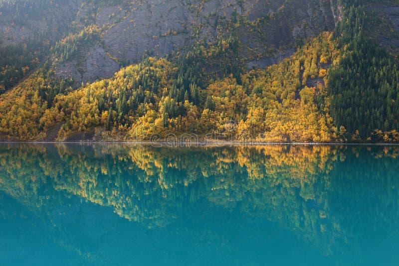Paysage avec des réflexions de lac de coucher du soleil en automne, arbres colorés d'automne d'Alpes d'emplacement, Italie, l'E image libre de droits