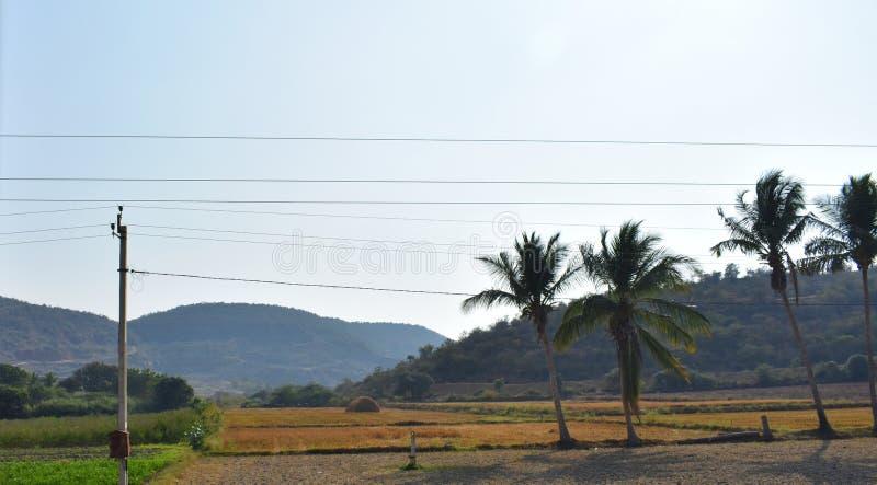 Paysage avec la montagne, les nuages et les arbres photographie stock libre de droits