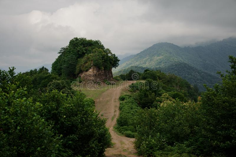 Paysage avec la route de montagne dans les bois images libres de droits