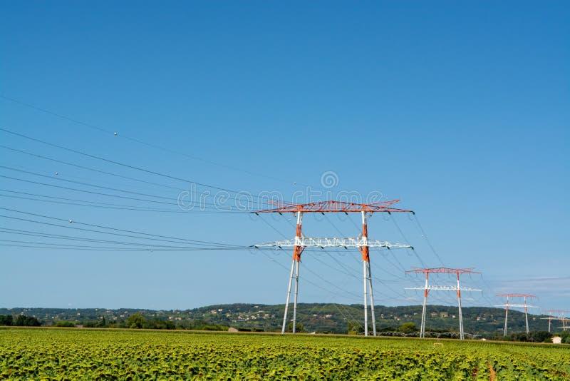 Paysage avec le champ à haute tension de ligne électrique et de tournesols images stock