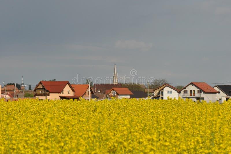 Paysage avec le champ et le village de viol image stock