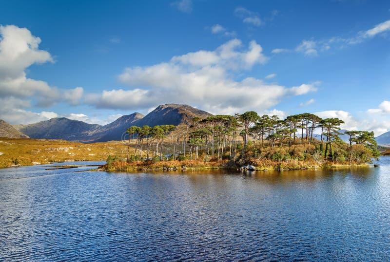 Paysage avec le lac dans le comt? de Galway, Irlande image libre de droits