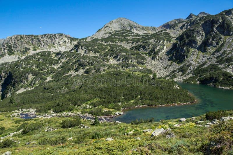 Paysage avec le lac supérieur Vasilashko et les collines vertes de la montagne de Pirin, Bulgarie photos libres de droits