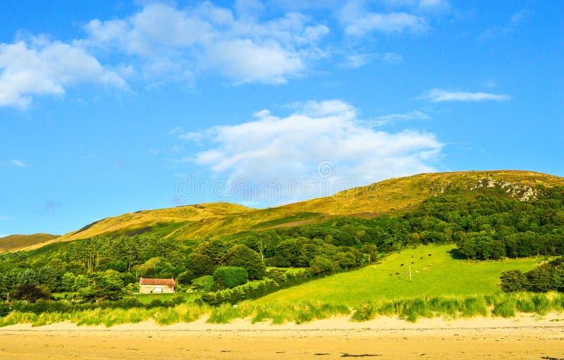 Paysage avec les collines vertes, le ciel bleu, la Chambre et les animaux sur classé image stock