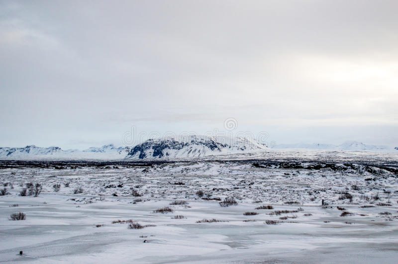 Paysage blanc d'hiver en Islande image stock