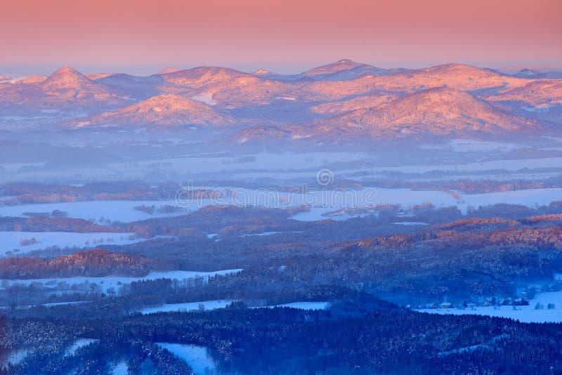 Paysage bleu d'hiver, forêt d'arbre de bouleau avec la neige, glace et givre Lumière rose de matin avant lever de soleil Crépuscu image libre de droits