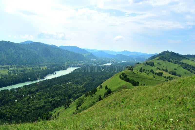 Paysage bleu de rivière de Katun de la journée de montagnes d'Altai photos stock