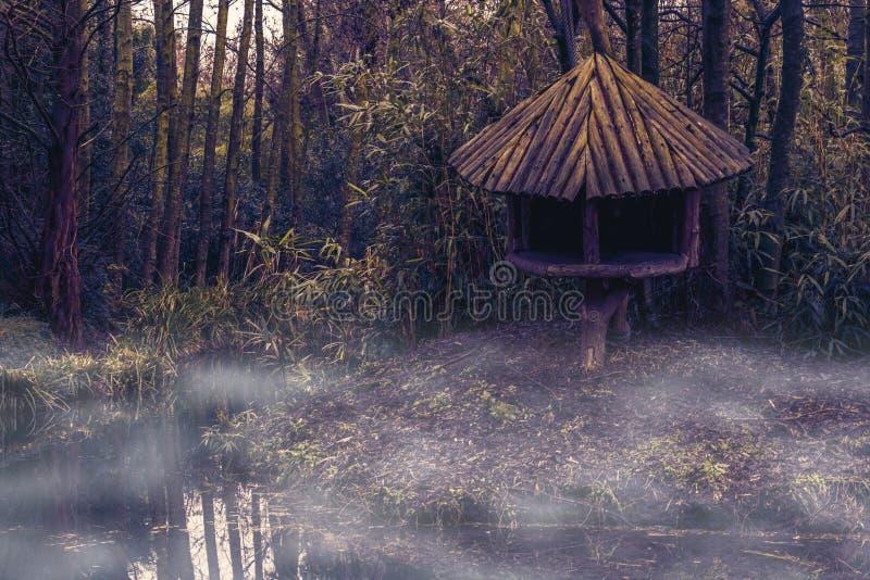 Paysage brumeux de marais avec une hutte d'arbre sur le côté de rivière, paysage de nature de jungle image stock
