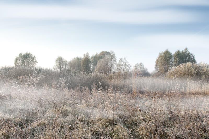 Paysage brumeux de matin d'automne photographie stock libre de droits