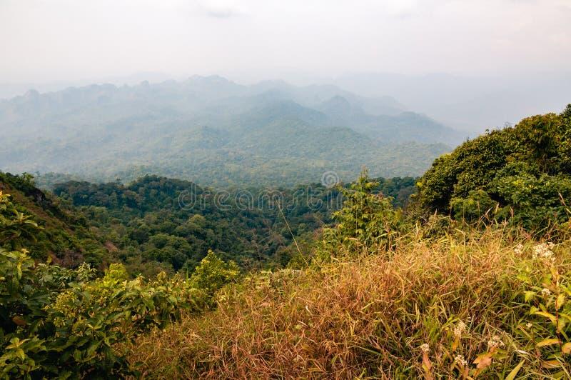 Paysage brumeux de montagne en automne photo libre de droits