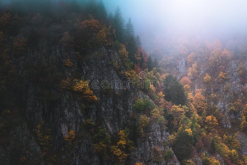 Paysage brumeux et d?prim? dans les montagnes de VOSGES, France Arbres color?s et paysage rocheux de falaise image libre de droits