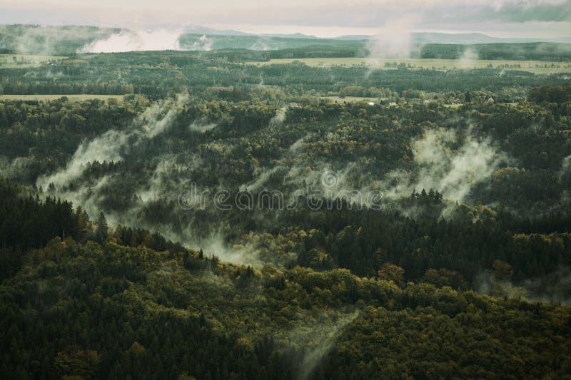 paysage brumeux Matin brumeux brumeux avec le lever de soleil dans une vallée de parc de Bohème de la Suisse Détail de forêt, pay photographie stock libre de droits