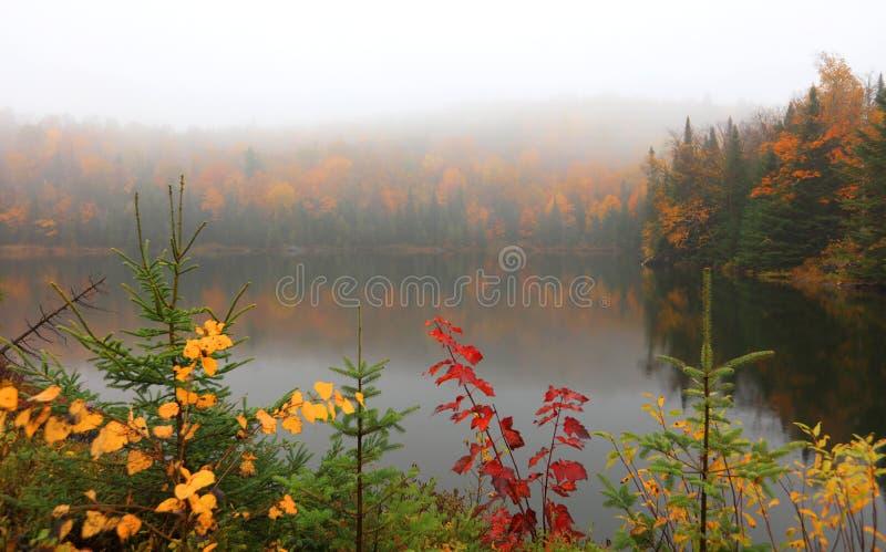 Paysage brumeux près de Mont Tremblant au Québec photos stock