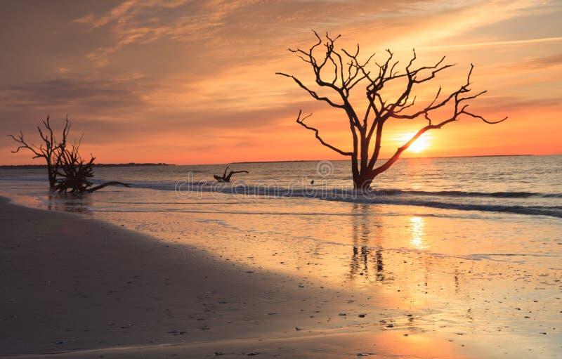 Sc côtier de lever de soleil de lueur d'or photographie stock libre de droits