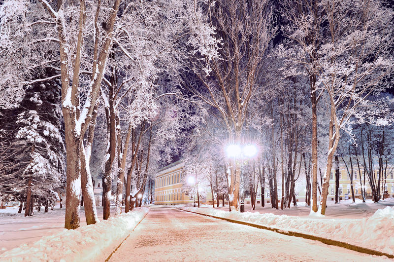 Paysage coloré d'hiver - allée d'hiver en parc avec les arbres givrés d'hiver et les lanternes lumineuses photographie stock