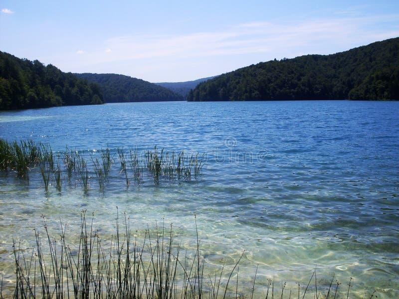 Paysage coloré et vibrant de rivage de lac Paysage tranquille utile comme fond Abaissez le canyon de lacs Nationa de lacs Plitvic photos stock