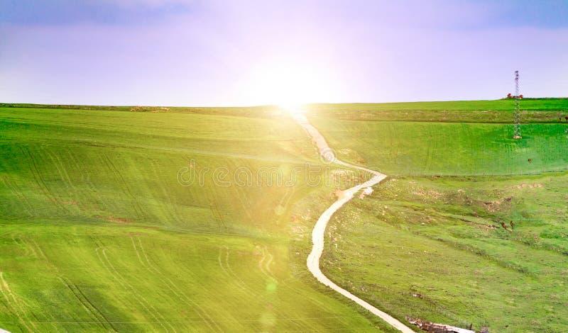 Paysage d'été avec l'herbe verte, les routes et les nuages, chemin de terre de champ en été photos stock