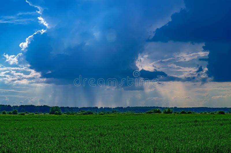 Paysage d'été avec la pluie au-dessus d'un champ vert à l'horizon Rayons de Sun par les nuages bleu-foncé photographie stock