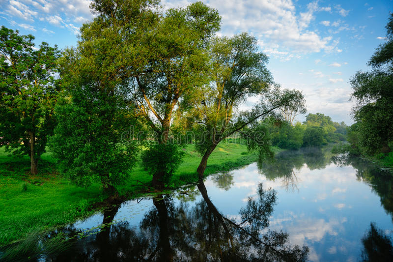Paysage d'été avec la rivière Mukhavets photos libres de droits