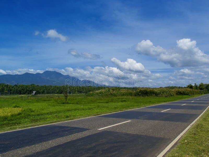 Paysage d'été avec la route par la terre rurale Vue lumineuse de nature tropicale de route photo stock