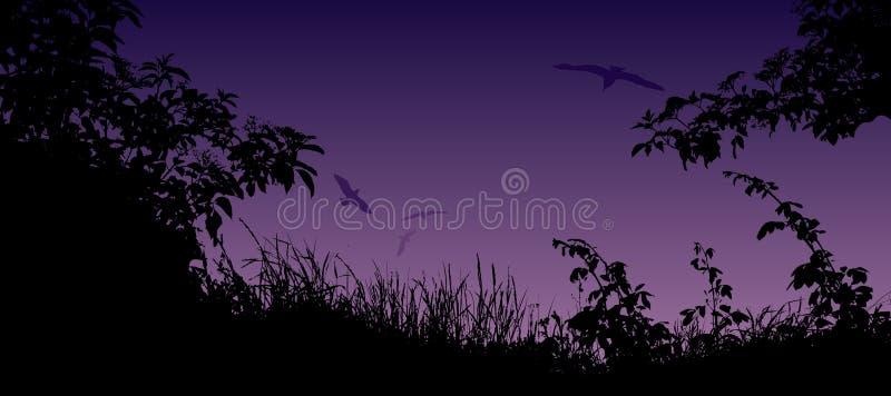 Paysage d'été avec la silhouette de l'herbe, des fleurs et des oiseaux illustration stock