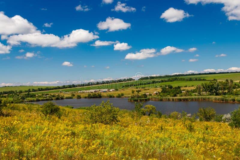 Paysage d'été avec le beau lac, les prés verts, les collines, les arbres et le ciel bleu images libres de droits