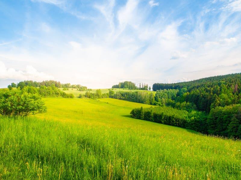 Paysage d'été avec les prés verts luxuriants, la forêt, le ciel bleu, les nuages blancs et le soleil brillant lumineux, Républiqu photographie stock libre de droits