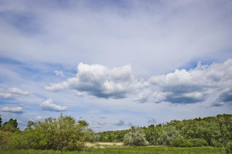 Paysage d'été - cumulus et Cirrus dans le ciel bleu photos libres de droits