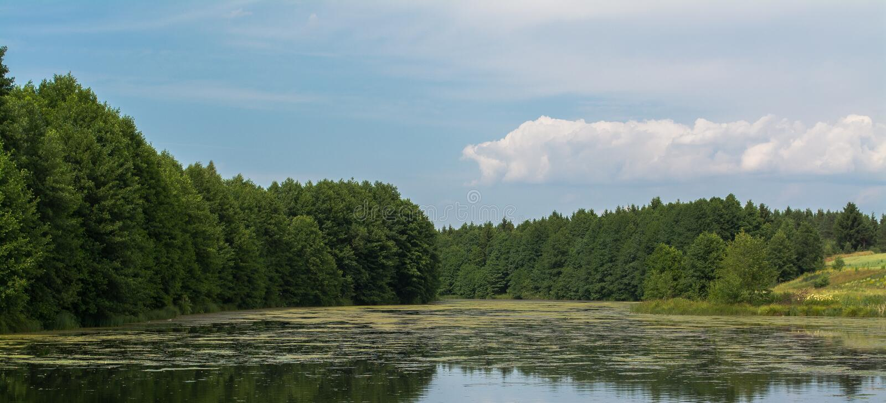 Paysage d'été d'automne photos libres de droits