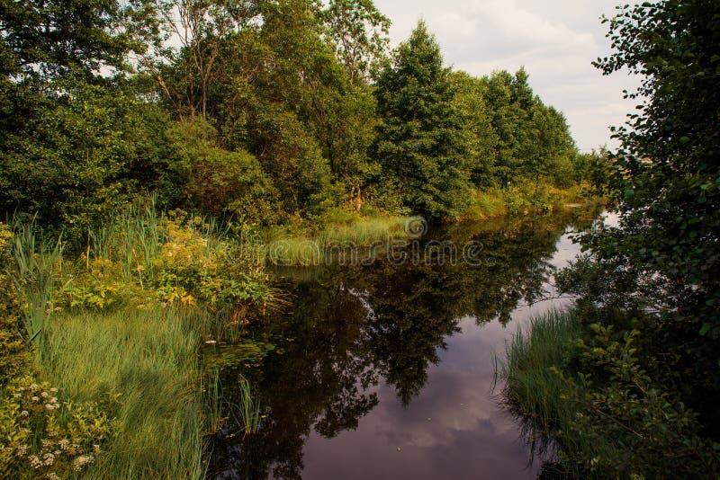 Paysage d'été d'automne image libre de droits