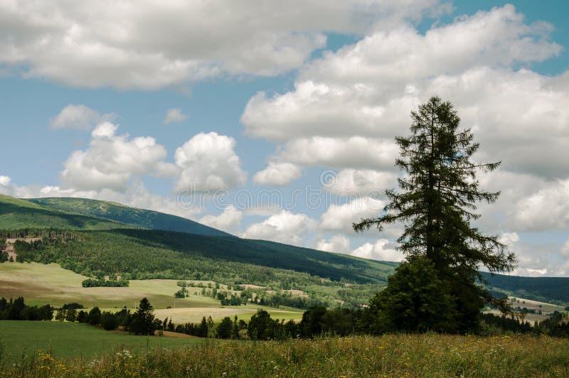 Paysage d'été dans un jour nuageux en montagnes de Jeseniky image libre de droits