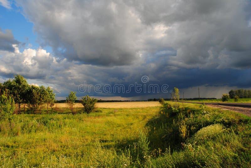 paysage d'été de paysage d'été dans la région noire centrale de la terre, Russie image libre de droits
