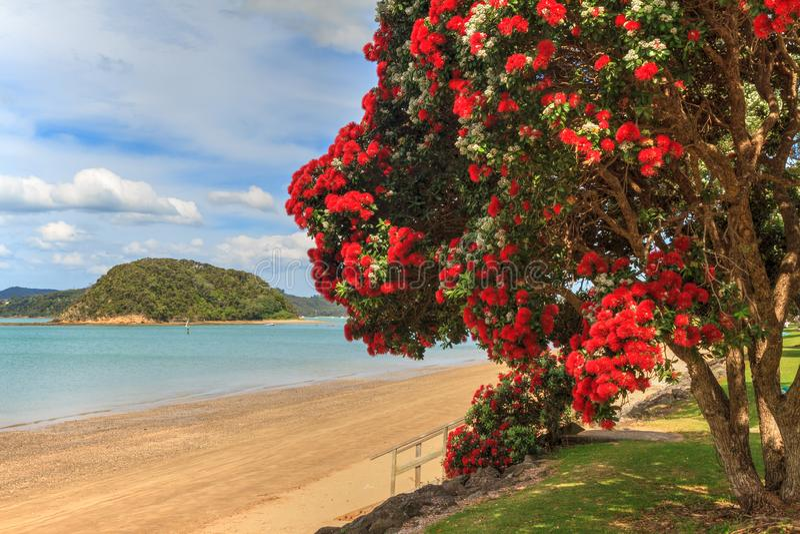 Paysage d'été, Paihia, baie des îles, Nouvelle-Zélande photographie stock