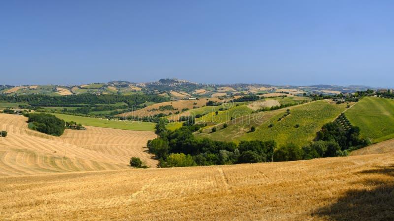 Paysage d'été près de Monterubbiano Fermo, Marches photo libre de droits