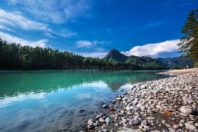 Paysage d'été sur la rivière de Katun Altai, Sibérie du sud, RU photos libres de droits