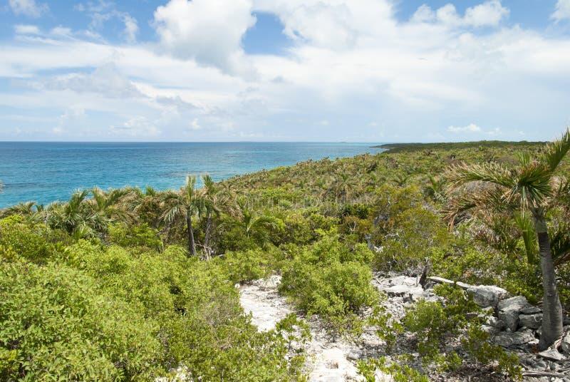 Paysage d'île des Caraïbes image stock