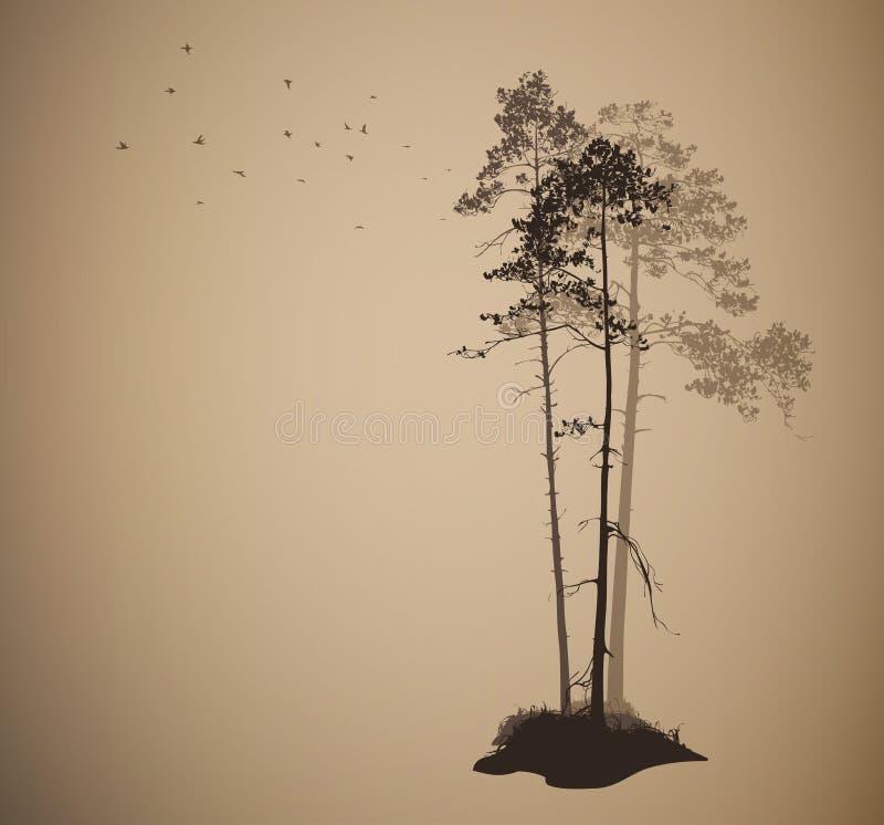 Paysage d'air avec des silhouettes des pins illustration libre de droits