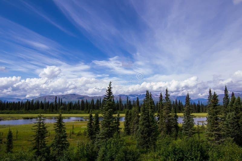 Paysage d'Alaska de rivière photo stock