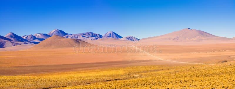 Paysage d'Altiplano à plus de 4000 mètres d'altitude dans le désert d'Atacama photographie stock