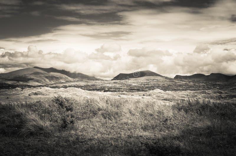 Paysage d'Anglesey Pays de Galles, Cymru photographie stock libre de droits