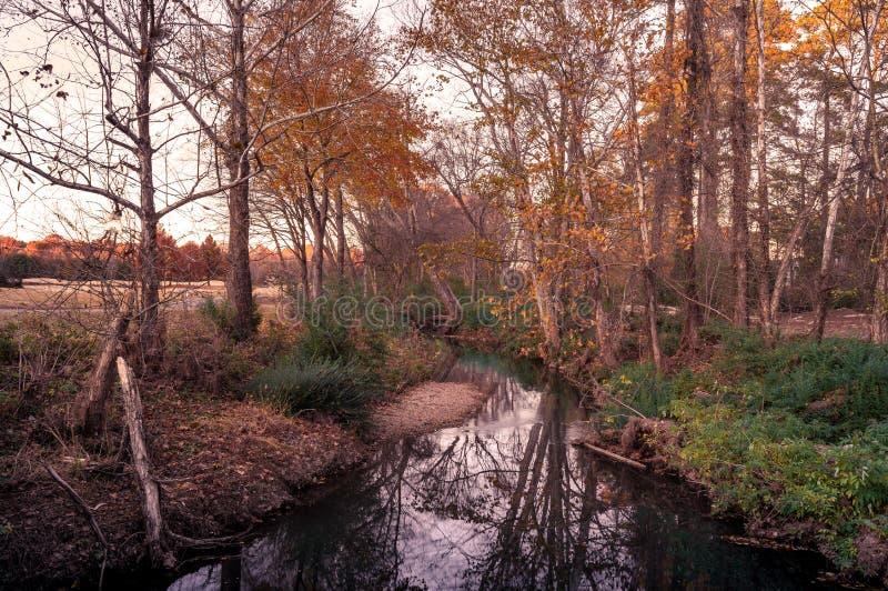 Paysage d'automne avec un cours d'eau centralisé image libre de droits