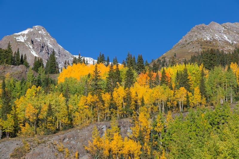 Paysage d'automne de montagne du Colorado photographie stock libre de droits