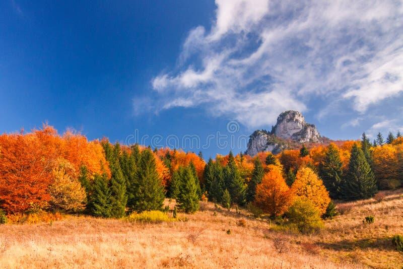 Paysage d'automne en parc national de Mala Fatra, Slovaquie photo libre de droits